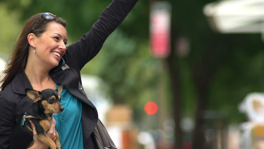 A woman holds her dog in her arm and talks on her cell phone and then raises her hand to hail a cab