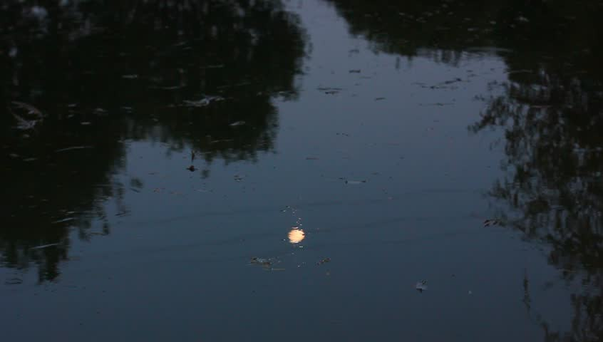 Calm water surface of lake at night | Shutterstock HD Video #4652594