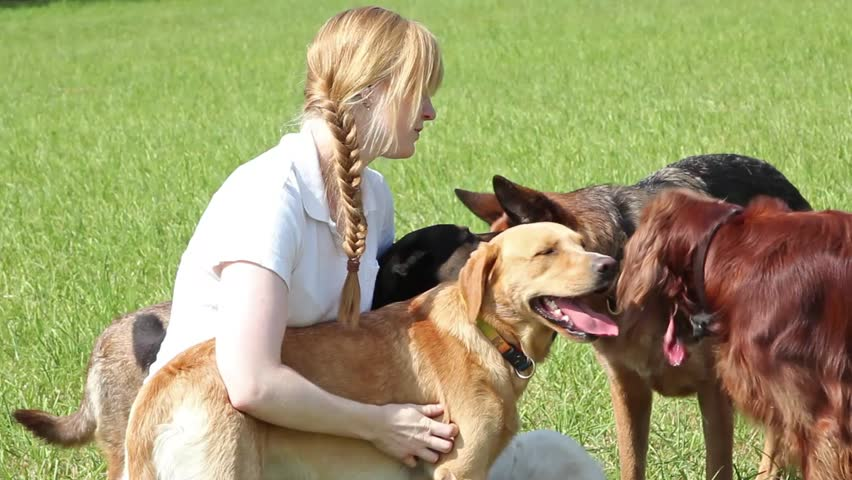 Professional dog  walker is cuddling with an irish setter