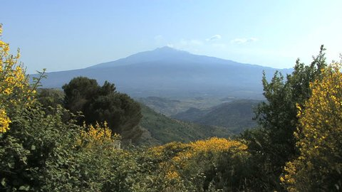 Sicily Etna and yellow flowers