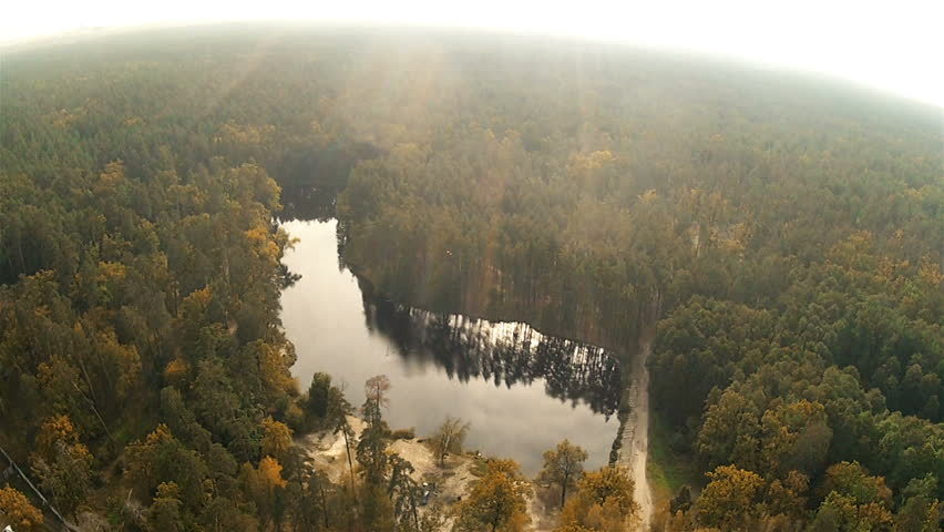 Forest landscape with a pond. Aerial