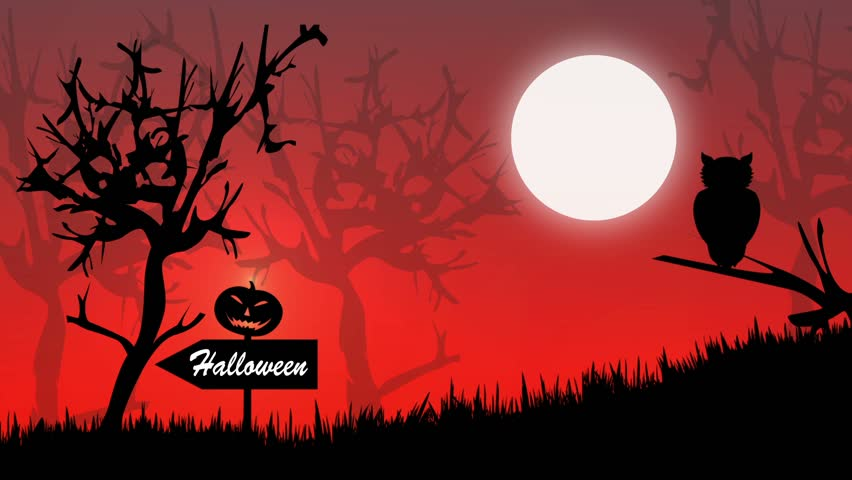 Halloween Animation And Witch In The Black Forest   HD Stock Video Clip