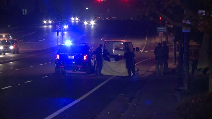 Stock Video Of Fatal Accident Emergency Scene Flashing Lights | 5081564 |  Shutterstock