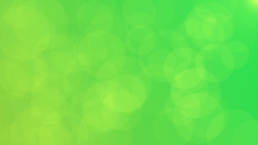 Light Of The Fresh Green Stock Footage Video 100 Royalty