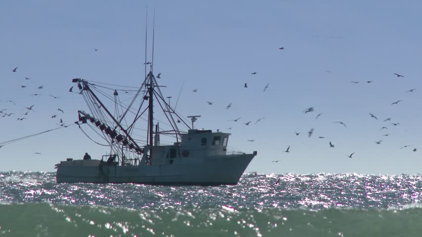 A commercial fishing boat on the horizon in the distance.  In 4K UltraHD. | Shutterstock HD Video #5203082