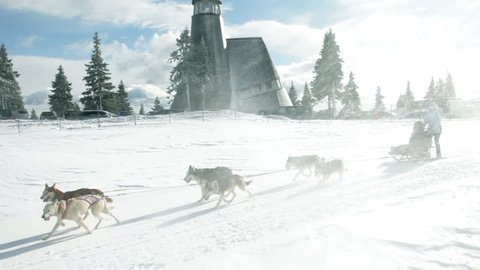 Husky dogs pulling the sled in an idyllic snowy countryside.