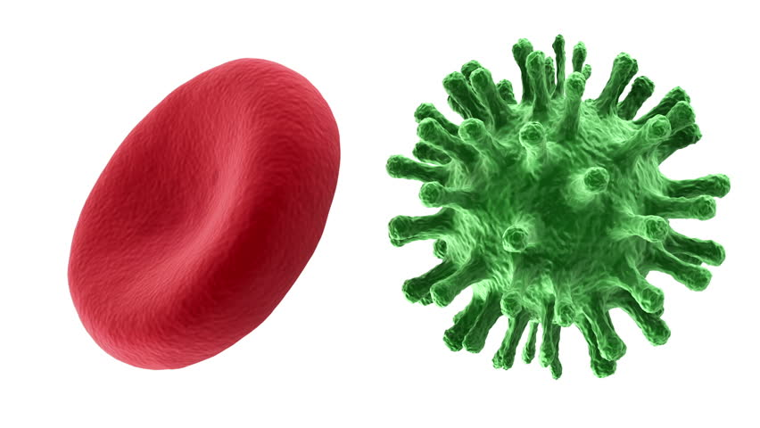 Animation of Red Blood Cell and Virus Rotation. HQ Seamless Looping Video Clip with Alpha Channel