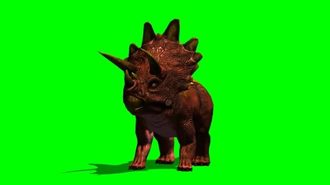 Dinosaurs Triceratops roars animation green screen video Footage