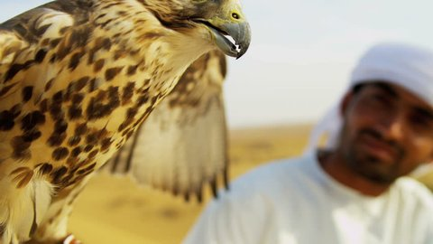 Full frame portrait peregrine falcon with Arabic male owner outdoors desert location shot on RED EPIC, 4K, UHD, Ultra HD resolution