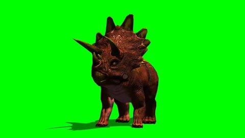Dinosaur Triceratops roar - seperated on green screen