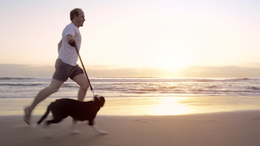 Happy man running dog on beach lifestyle steadicam shot