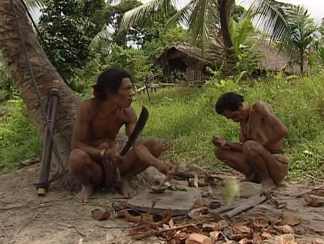 Siberut Island, Sumatra, Indonesia - March 9, 2003 - Mentawai making curare poison