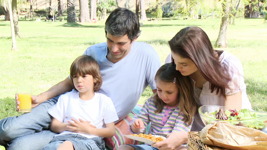 Family having a picnic in a park. Footage in high definition