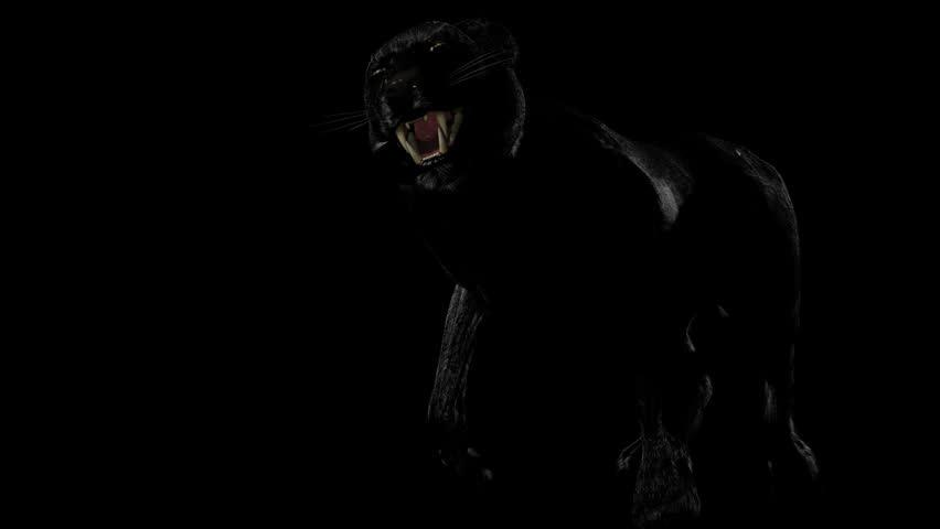 Rush black panther