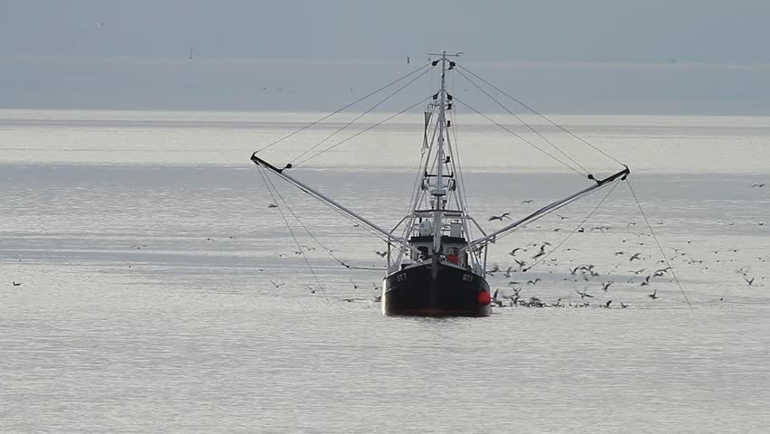 Shrimp Boat in the North Sea