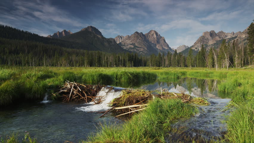 Wide shot of mountains and beaver dam on lake / Redfish Lake, Idaho, United States