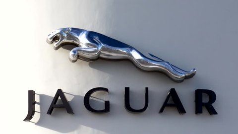Jaguar Logo Stock Video Footage 4k And Hd Video Clips Shutterstock