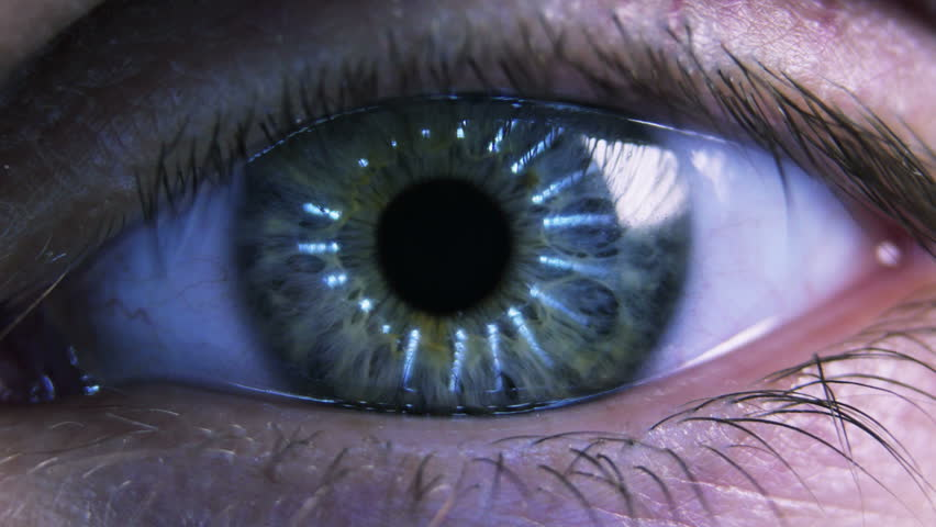 Eye iris and pupil macro. Reflected light rays into the human eye #6604484