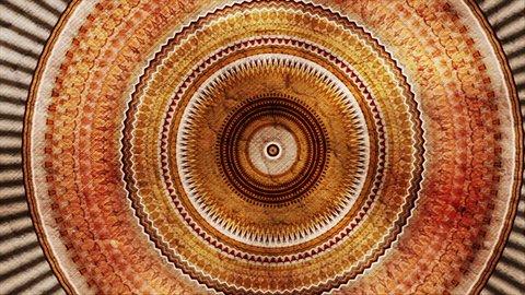 Color fractal design and circular motion. Kaleidoscope