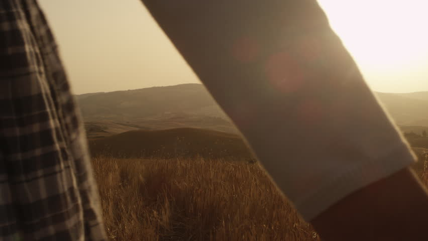 Brother and Sister are Walking in Wheat Field at Sunset.  | Shutterstock HD Video #6723436