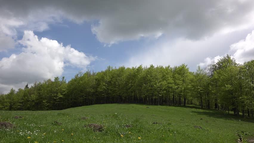Rain falling down on beautiful spring meadow, fluffy clouds | Shutterstock HD Video #6760594