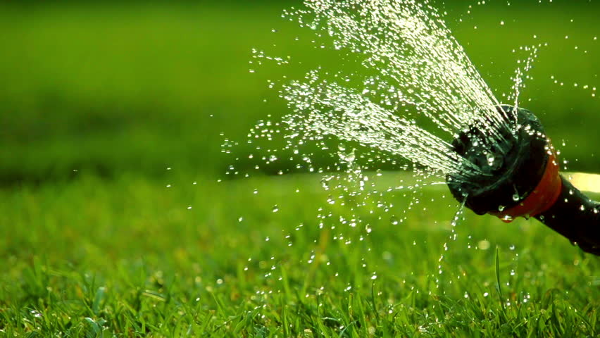 Watering the green grass. Sparkling water spraying out of sprinkler on the green lawn. Summer gardening. Slow motion filmed at 250 fps.