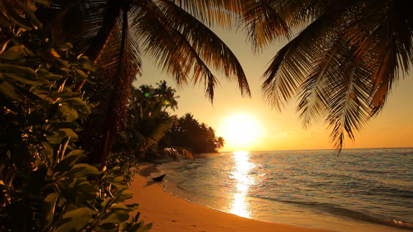 nice sunset on tropical island