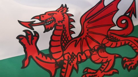 The flag of Wales in the United Kingdom. The flag incorporates the Red Dragon of Cadwaladr, King of Gwynedd, along with the Tudor colors of green and white.