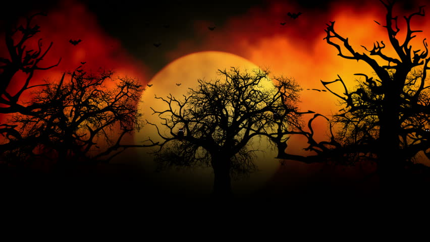 background with the elements during halloween such as ghost bats pumpkins and so on stock footage video 7303744 shutterstock - Halloween Background Video