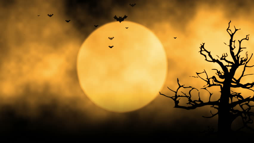 background with the elements during halloween such as ghost bats pumpkins and so on stock footage video 7305004 shutterstock - Halloween Background Video