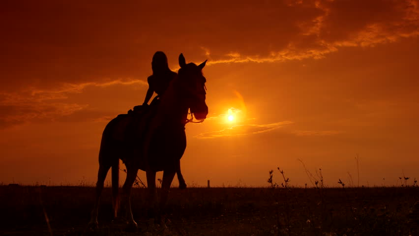 Horseback riding to the horizon at sunset #7357684