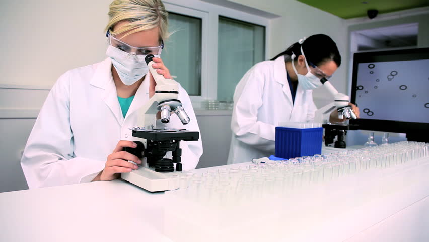 Two female medical researchers working with microscopes in laboratory conditions