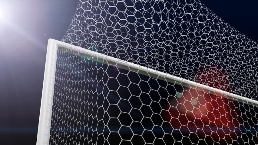 Shot soccer ball a goal in gate