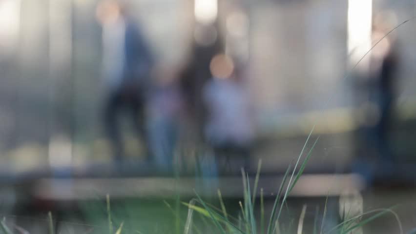 de-focused children jumping on elastic carpet