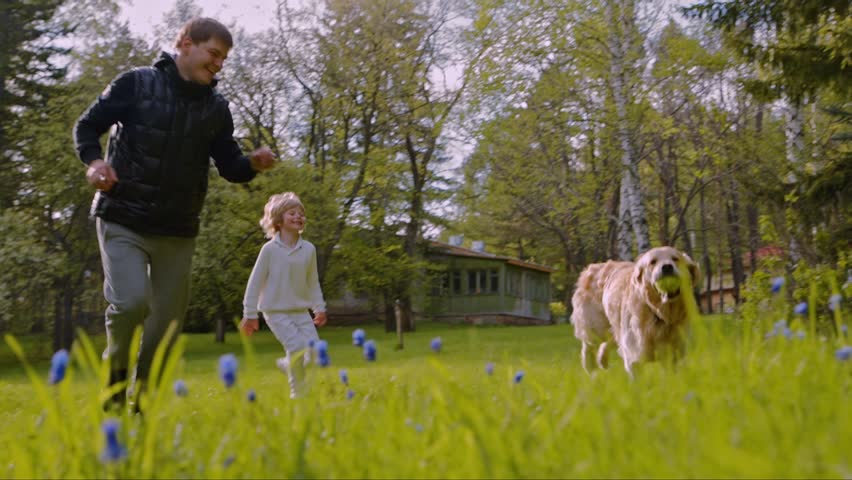 Father and son playing with a dog on a green lawn