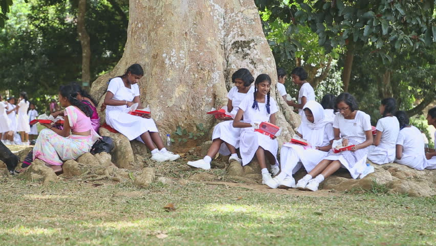 Sri lanka videos new