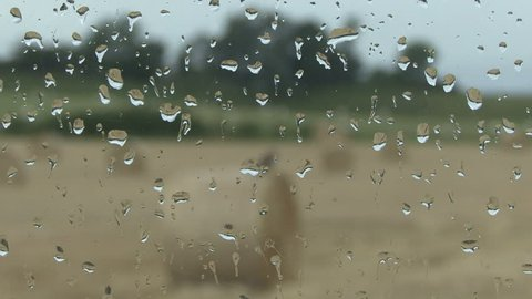 Close up Image of Rain Stock Footage Video (100% Royalty