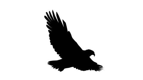 Eagle inciting wings flying gliding,haliaeetus leucocephalus bird animal sketch silhouette.american freedom symbol. cg_02179