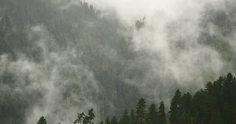 4k time lapse of mountain mist rising in the morning,fog pine trees,such as wonderland.Bomi County in tibet,the largest precipitation area in China. gh2_09925_4k