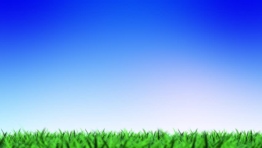 green grass field animated. Colorful Green Field And Sky Blue With White Cloud. 1980 X 1080 Grass On A Animated Shutterstock