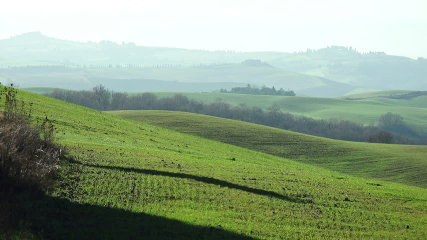 tuscany landscape of the countryside near Siena #8909224