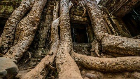 Prohm Temple Ruins, Angkor complex, Siem Reap, Cambodia
