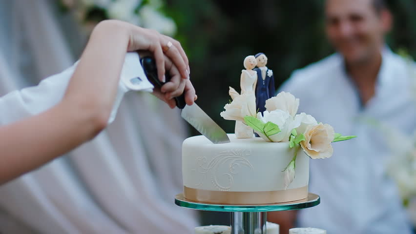 Bride and groom cut wedding cake with funny decoration