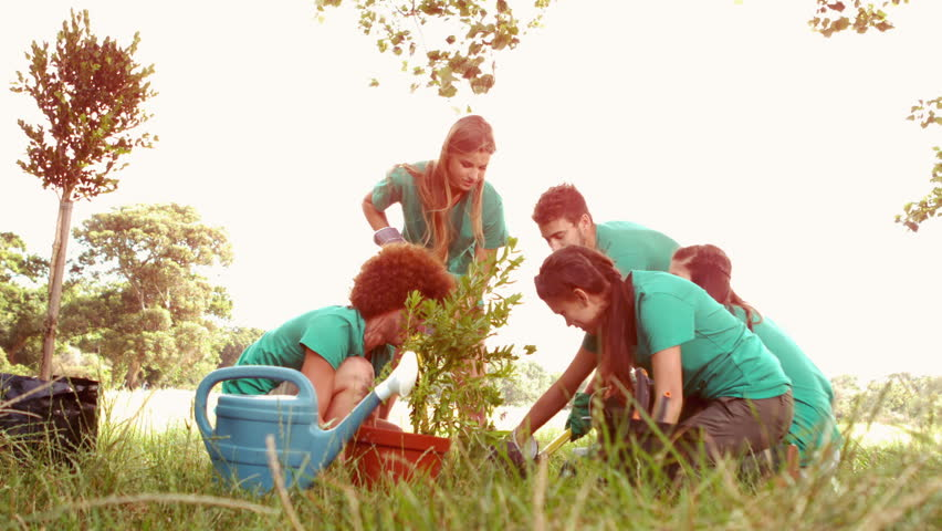 In slow motion happy friends gardening for the community on a sunny day | Shutterstock HD Video #9150584