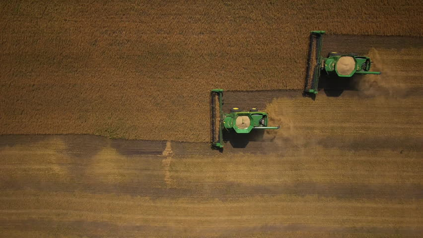 Stock Video Footage aerial view combines harvesting top view