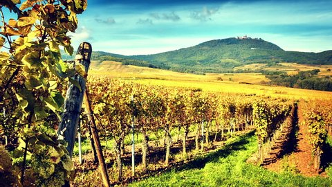 Alsace, France. Landscape with autumn vineyards of wine route. Timelapse, Full HD, 1080p