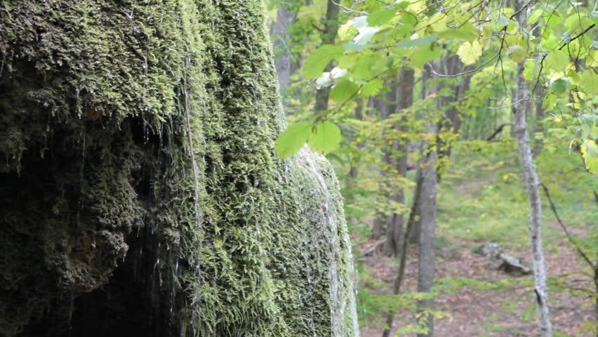 Waterfall silver stream in Crimea.    Shutterstock HD Video #945304